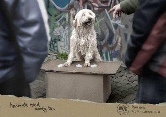 NOE Animal Shelter Hungary: Dealer by Leo Burnett    Animals in Print Ads