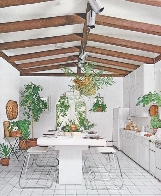 white kitchen filled with plants
