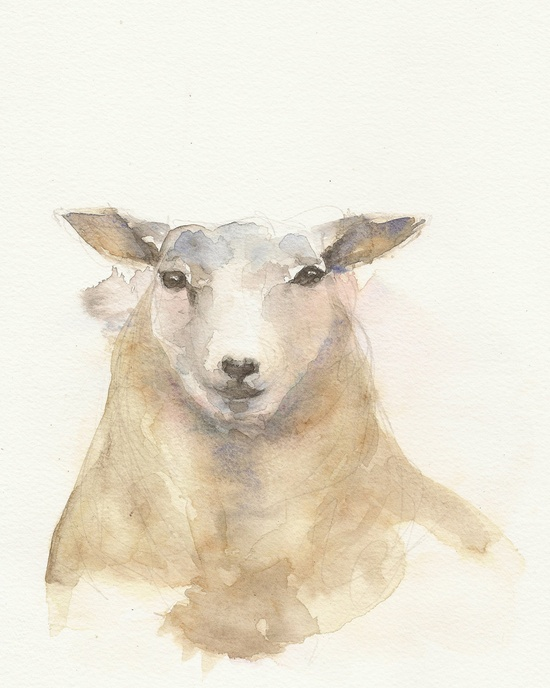 Sheep Original watercolor painting Animal art by FrancinaMaria
