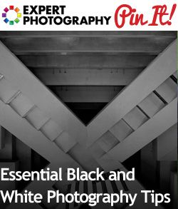 Essential Black and White Photography Tips