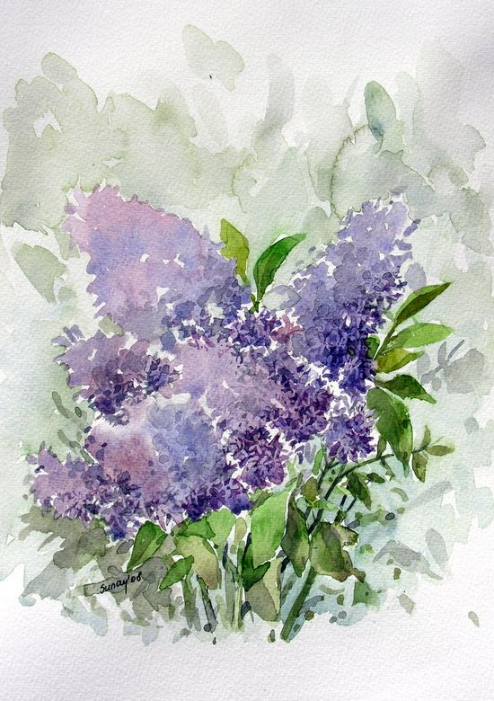 Lilac watercolor by Sunaysenturk, on deviantart.com