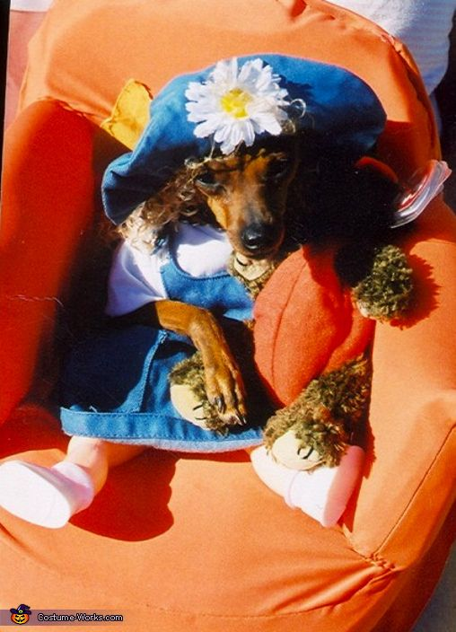 Little Girl Dog - Homemade costumes for pets