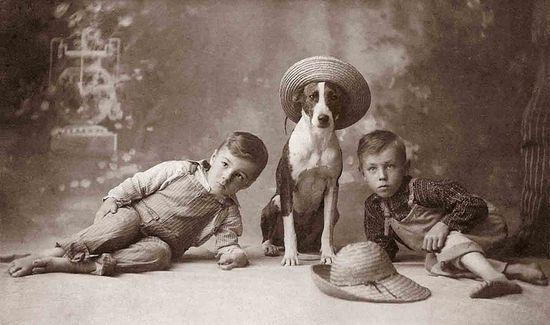 Hats by Libby Hall Dog Photo, via Flickr