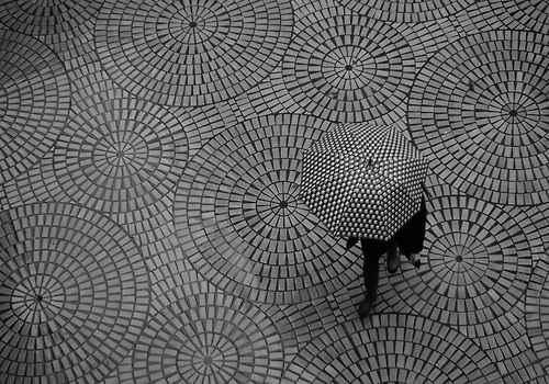 Umbrella / Pattern / Black and White