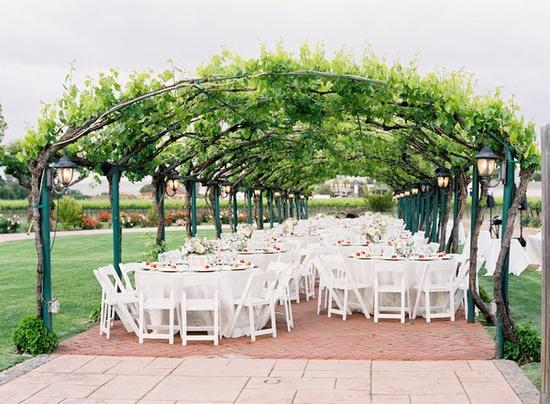 outdoor vineyard reception setting.