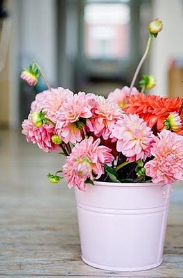 I just love flowers--especially these!!