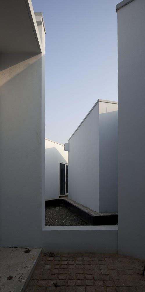 The Lotus Courtyard / TM Studio