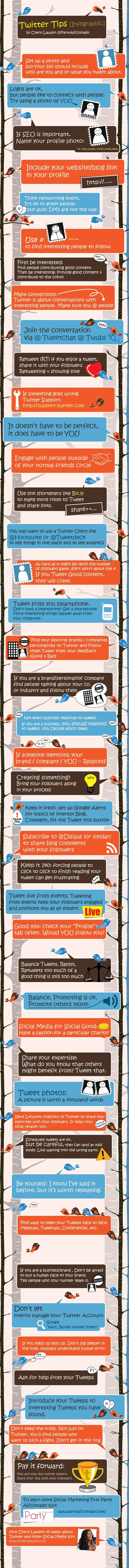 Twitter Tips (Infographic)