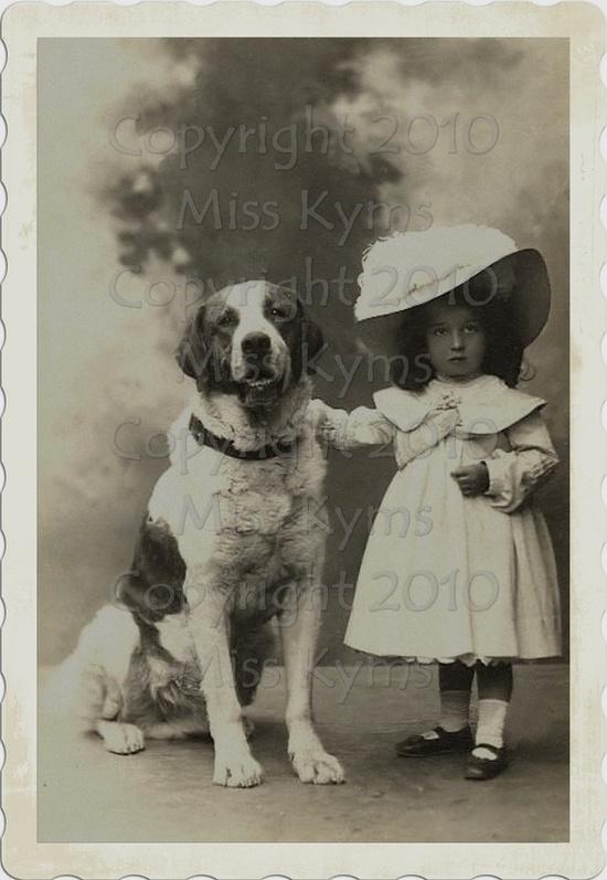 Big dog-little girl :)