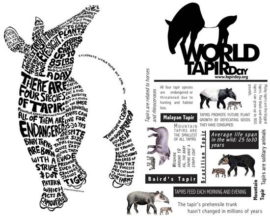 Happy World Tapir Day!!