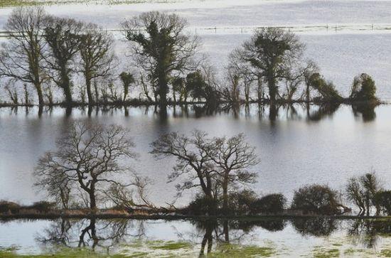 Somerset Levels floo