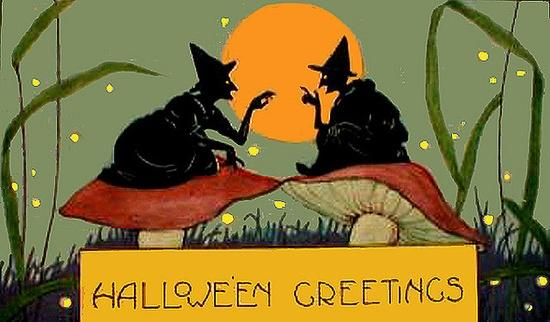 Weird Wonderful Witches on Mushrooms Vintage Halloween Postcard