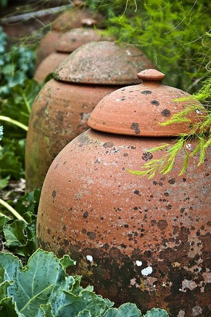 garden cloches