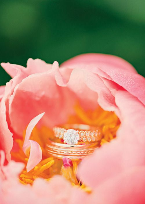 Flower Petal Engagement/Wedding Photo