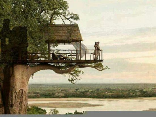 Dream Home ???