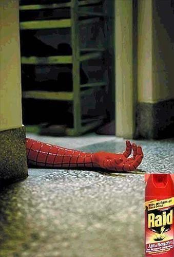 Kills all types of spiders...