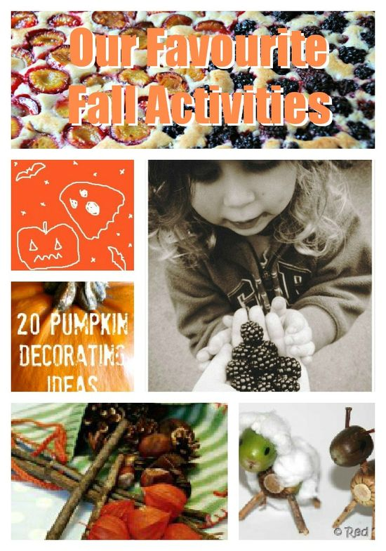 Our fall activities for kids, Life At The Zoo
