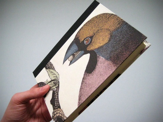 Natural History Of Birds, day planner @Etsy