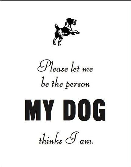 because my dog thinks I'm awesome