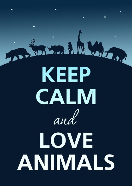 ... & Love Animals