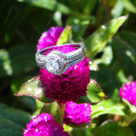 Ring wedding photo.