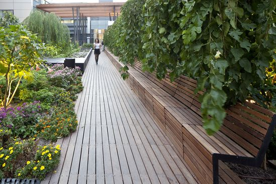The Green Cloud Project by Tema Landscape Architecture