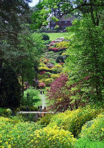 Leonardslee Gardens, West Sussex,