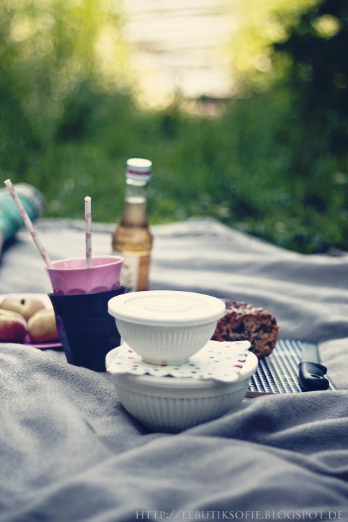 Delights of a picnic