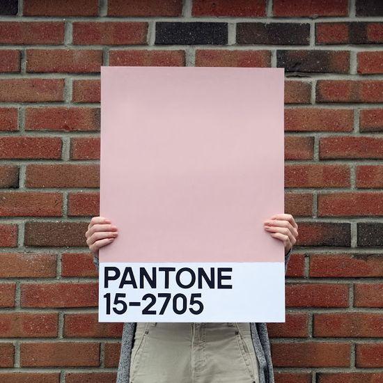 With designs: DIY Pantone Poster