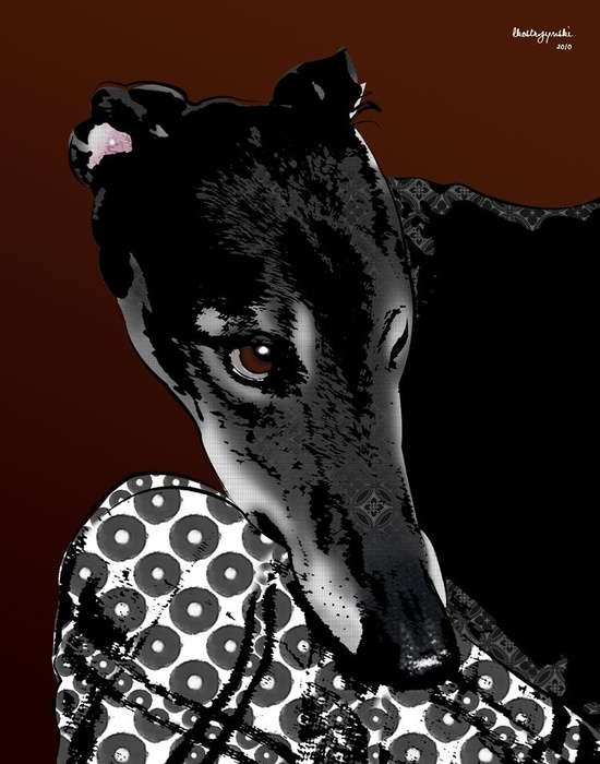 Johnny Greyhound Pop Art Print Whippet Art Dog by PopDogDesigns