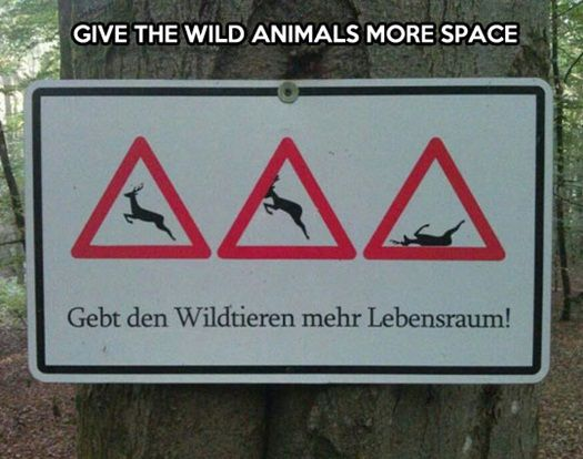 Wild animals need more space #funnysigns #lol