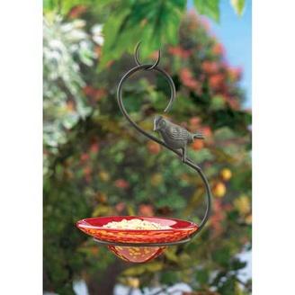 Orchard Oriole Bird Feeder