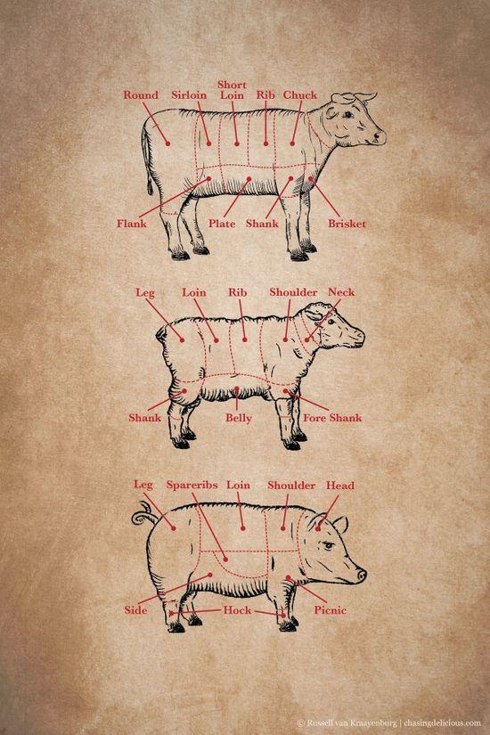 Kitchen 101: Meat Cuts