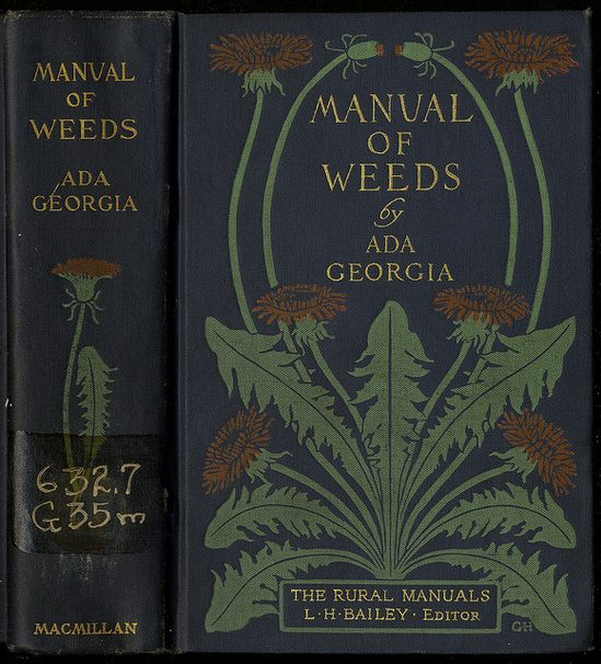 Wonderful Old Book Cover ... 'A Manual of Weed's'