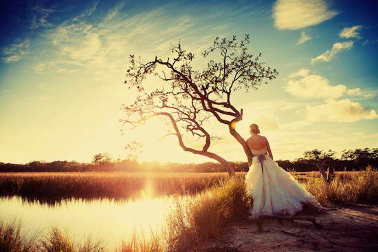 gorgeous outdoor bridal portrait by King Street Studios