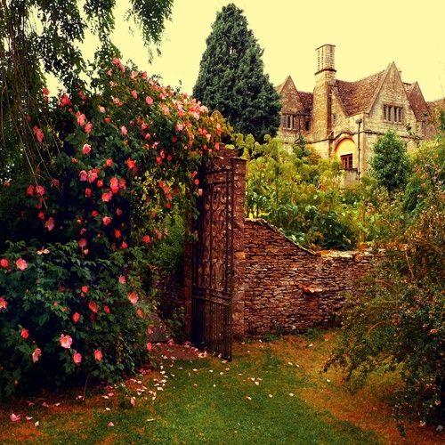 Just a little English garden
