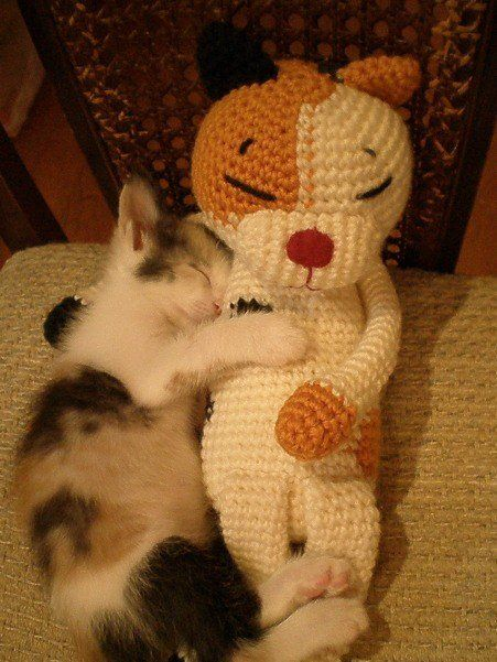 I LOVE PICTURES OF ANIMALS CUDDLING WITH STUFFED ANIMALS. ? that is all.