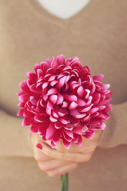 Of Flower