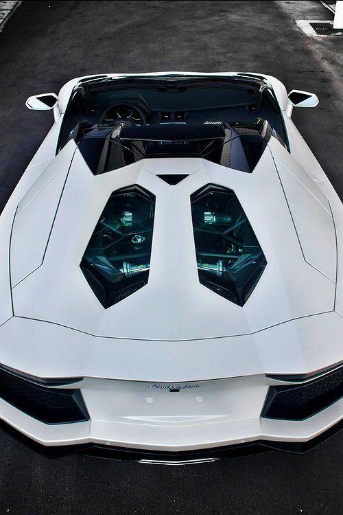 Stunning White Lamborghini Avenatador