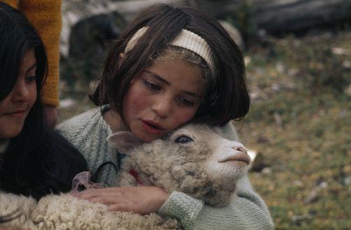 a girl singing to her pet lamb