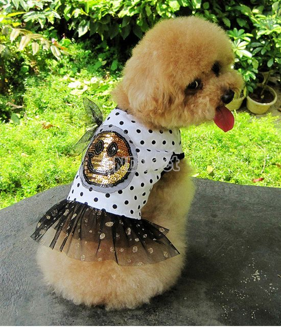 Puppy Pet Clothes Summer Dog Cute Smiling Face Round Dot Little Skirt XS-XL