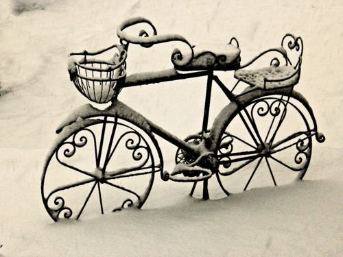 This bicycle is so pretty.