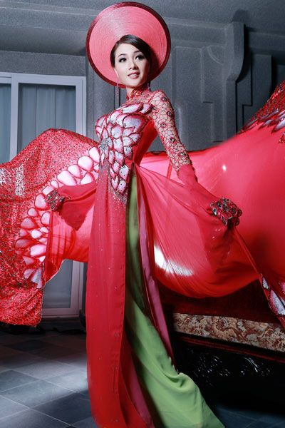 Ao Dai~Vietnamese Dress