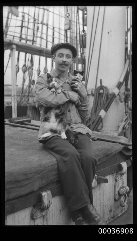 Seaman with a cat and kitten, ca. 1910.