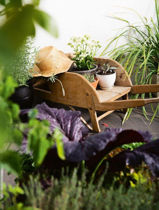 a perfect garden #jardins #gardens #decor