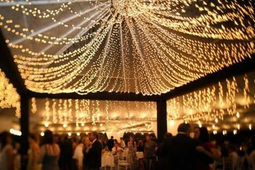 draped canopy of lights
