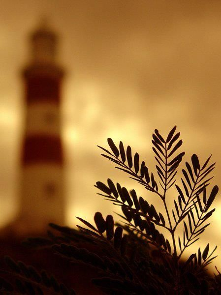 ? Lighthouse