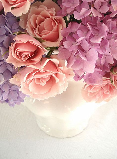 roses and hydrangeas - beautiful: by such pretty things on Flickr