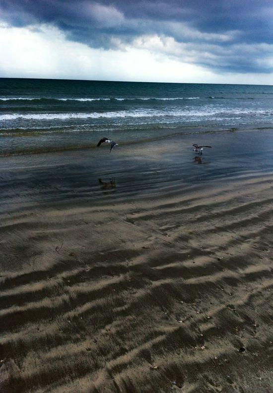 Beautiful beach day...