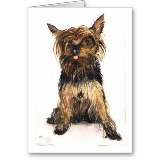 Yorkshire Terrier Greeting Card  Click on photo to purchase. Check out all current coupon offers and save! www.zazzle.com/...